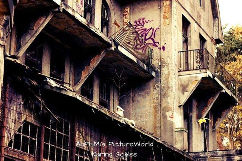 Lost Places Lost_place Verlassenerort Verlassener_ort Mv MVP Mecklenburg Meckpomm Mecklenburgvorpommern Mecklenburg_vorpommern Deutschland Germany