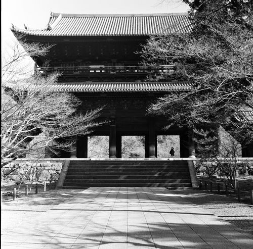 Analogue Photography Architecture Architecture_collection Black & White Film Japan Japan Photography Japanese Culture Japanese Temple Tree Analog Architectural Detail Architectural Feature Architecture_bw Blackandwhite Blackandwhite Photography Door Film Photography Filmcamera Filmisnotdead Hasselblad Light And Shadow Temple Temple Architecture Templephotography