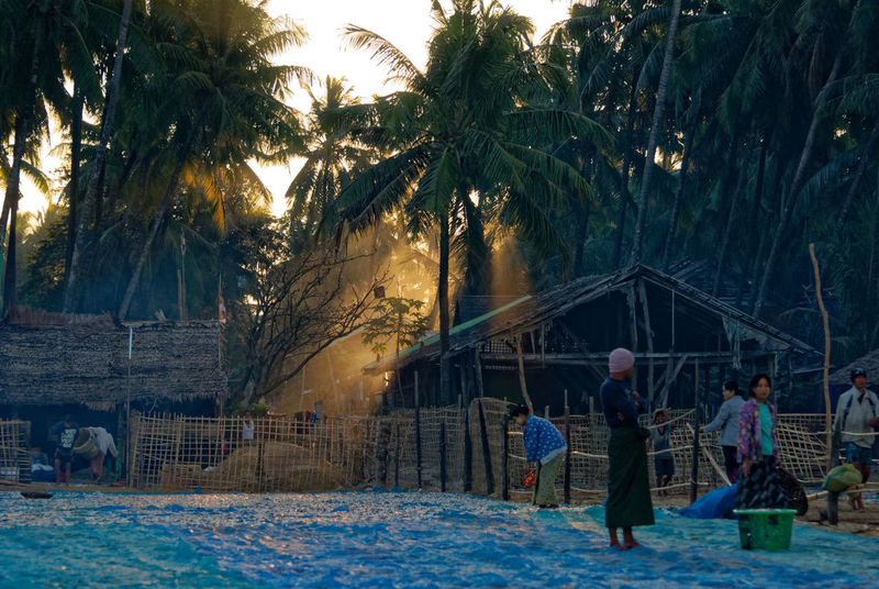 Soon the sun will be high enough to light the morning scene Nikon Rakhine State Architecture Beauty In Nature Building Exterior Built Structure Cold Temperature Full Length Leisure Activity Lifestyles Men Myanmar Nature Outdoors Palm Tree People Real People Sky Snow Tree Walking Women