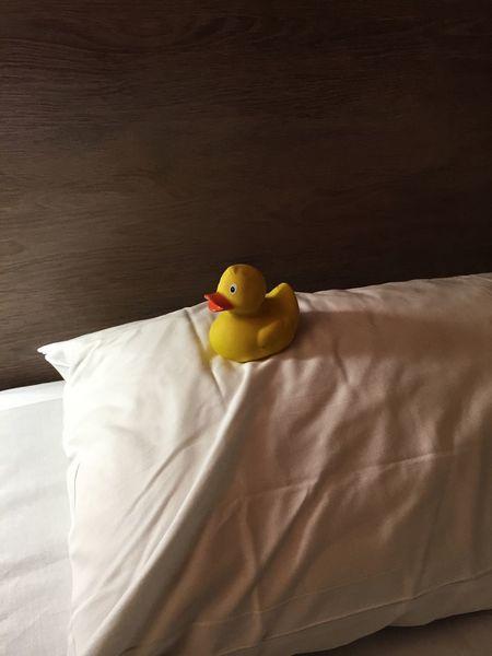 Duck Friend Pilow Almohada Pato Hotel
