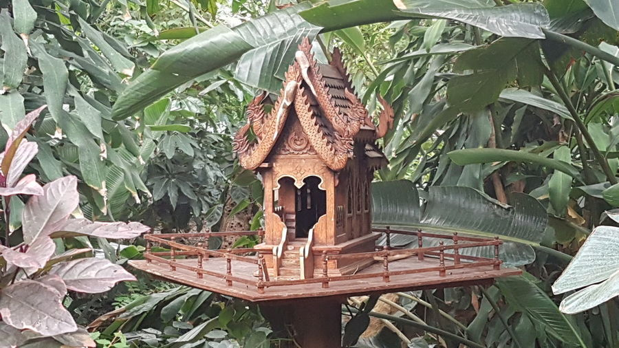 Bird House Asian  ASIA Culture Wood Wooden Built Decor Decoration Tree