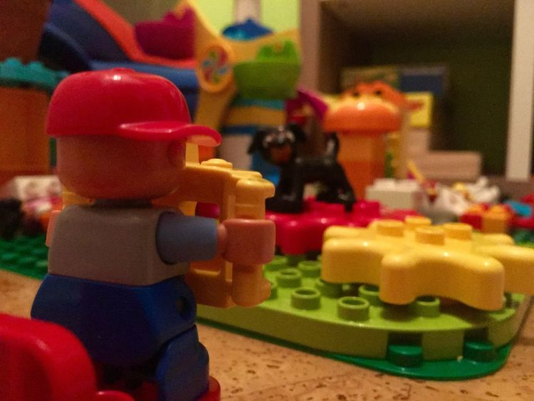 Duplo photographer in action Dog Duplo Concentration Toy Multi Colored Indoors  Plastic Toy Block Focus On Foreground No People Childhood Close-up Toy Car Day