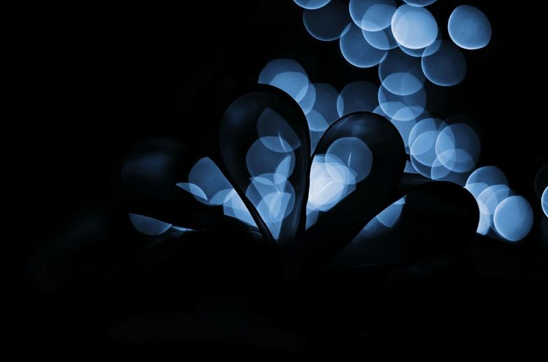 Bokeh in love Heart Shape No People Cloud - Sky Close-up Fragility Togetherness Outdoors Love Is In The Air Bokeh Loveyou Blur EyeEmNewHere EyeEmNewHere