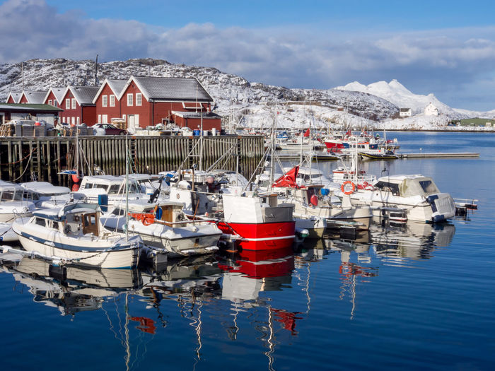 Fishing boats during the winter in Bodo harbor City Norway Architecture Arctic Bodø Day Harbor Moored Mountain Nature Nautical Vessel No People North Outdoors Port Red Reflection Sea Sky Town Transportation Water