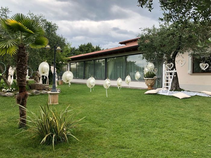Crative space Italy Wedding Creative Plant Tree Grass Architecture Green Color Nature Creative Space Sky