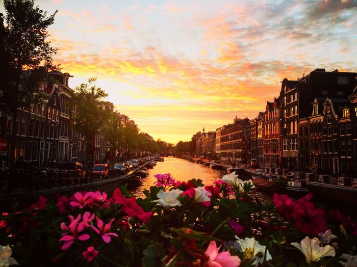 Beautiful sunset in Amsterdam Canal Walks Sunset Weekend Break Exploring Europe Riverside Flowers Colours Autumn