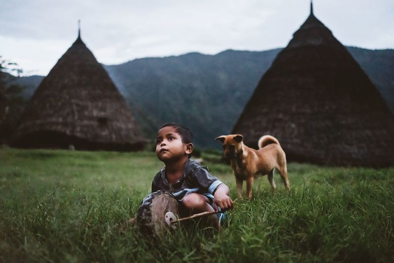 boy playing with dog & wooden disk in the mountain village Wae Rebo, Flores, Indonesia Adventure Ancient Building ASIA Asian Culture Boy Child Culture Dog Dusk Evening Flores Hidden Places INDONESIA Nusa Tenggara Timur Playing Portrait Traditional Village Travel Photography Traveling Trekking UNESCO World Heritage Site Village Village Life Wae Rebo Waerebo The Photojournalist - 2017 EyeEm Awards The Portraitist - 2017 EyeEm Awards Connected By Travel An Eye For Travel