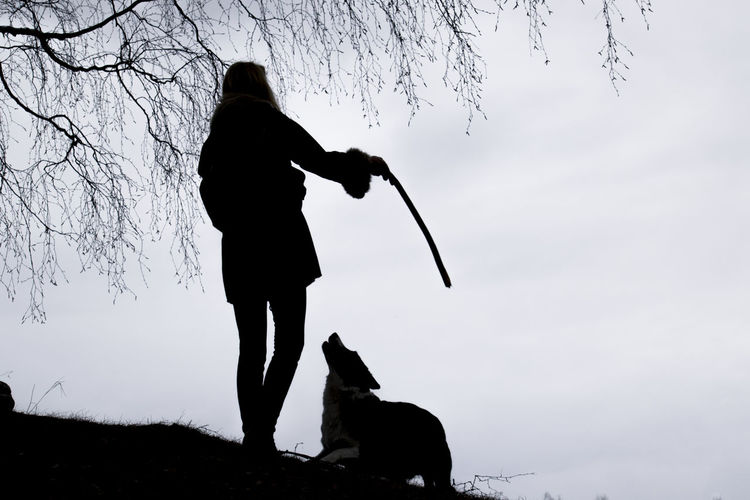 Silhouette Of Woman With Pet Dog Against Clear Sky