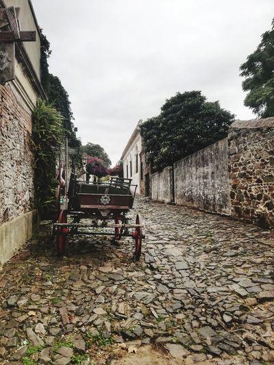 Calle de los