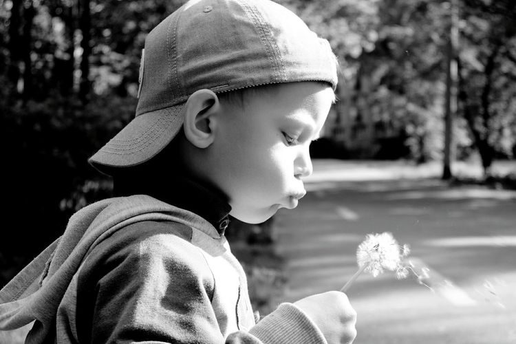 Side view of cute boy blowing dandelion seeds