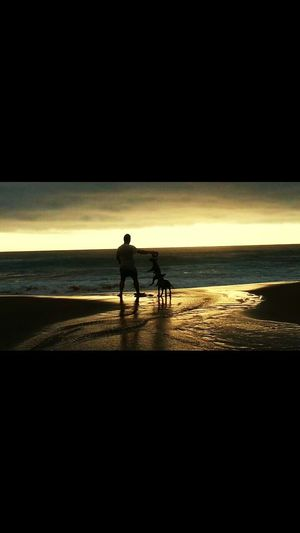 Sea Beach Sand Horse Full Length One Animal Horseback Riding Domestic Animals Horizon Over Water Shore Nature Beauty In Nature Real People Only Men Silhouette Men Adult Water Two People Mammal