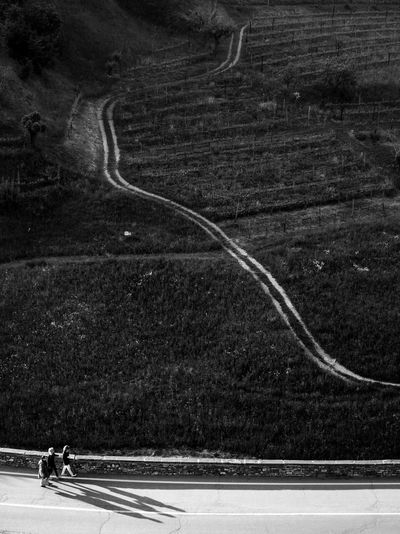 Collision course // Bergamo Alta // Apr'17 Outdoors Road Day One Person Animal Themes Only Men People Bergamo Bergamo Alta Blackandwhite Monochrome Streetphotography Landscape Lines Place Of Heart The Great Outdoors - 2017 EyeEm Awards