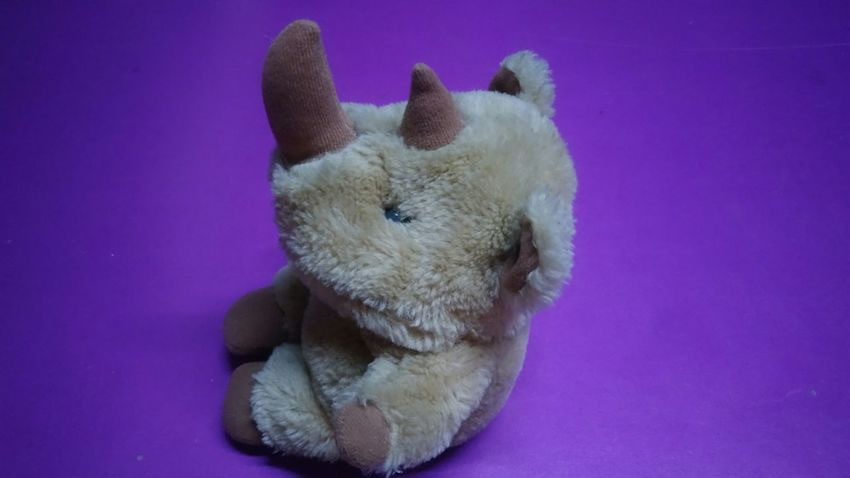 EyeEm Selects Pets Stuffed Toy Portrait Cute Colored Background High Angle View Close-up Purple Background
