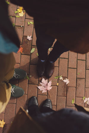 Adult Adults Only Autumn Autumn Colors Autumn Leaves Close-up Colors Day Feet High Angle View Human Body Part Human Leg Leafs Leisure Activity Lifestyles Low Section Men One Person Outdoors Park People Real People Sunlight Trees Women Out Of The Box