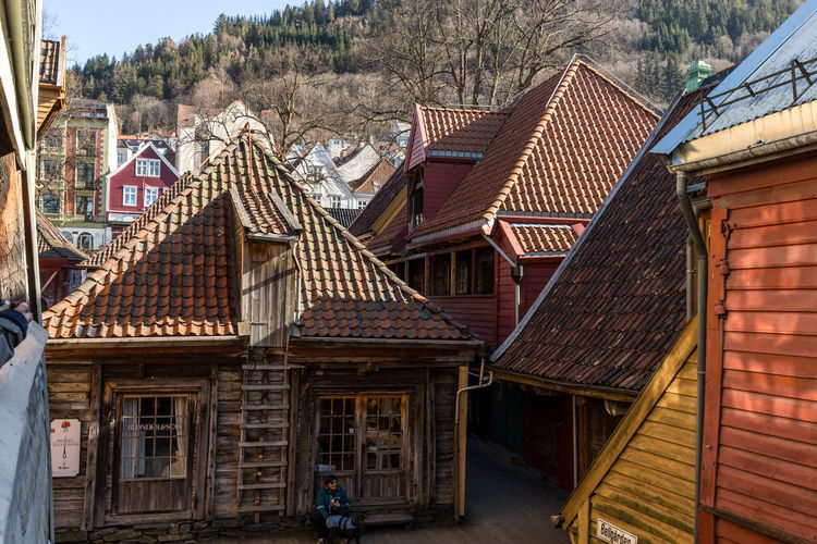 Architecture Built Structure Building Exterior Building Roof House Residential District Day No People Nature Outdoors Roof Tile City Wood - Material Old Window Travel Destinations Village Tree Bergen Bergen,Norway Bryggen Bryggen I Bergen