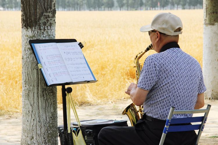 Wheat Field Rural Scene Cereal Plant Wood Saxophone Saxofone🎷 Saxophone Player One Man Only