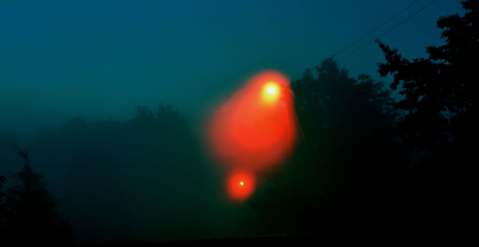 Abstract Beauty In Nature Dark Fog Lantern Lemp Light Lights Morning Morning Light Morning Walk Night No People Red Scary Smoke Taking Photos Tranquil Scene Tranquility Tree Uncomfortable