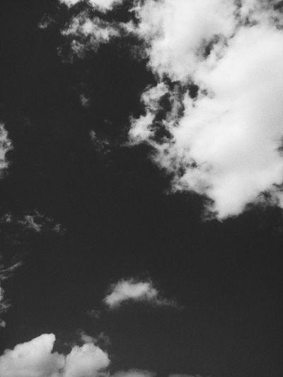 monochrome sky. Mobilephotography VSCO Vscocam Vscophoto Vscoasia Vscovietnam Sky Cloud - Sky Cloud Monochrome monochrome photography Blackandwhite Bnw Grainisgood PhonePhotography Tree Sky Blue Color Backgrounds Sky Only Meteorology Sunset Cumulus Cloud Heaven Cloudscape Fluffy Cumulonimbus Tall Calm LINE