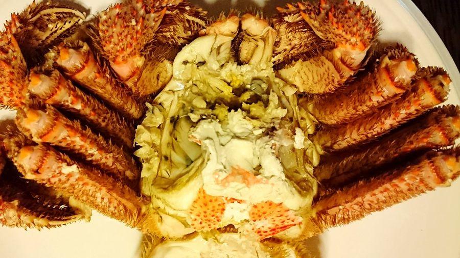 毛ガニ Hair Crab