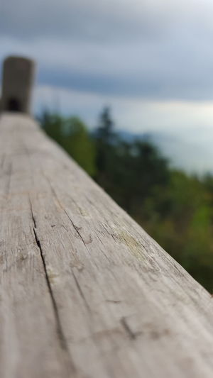 Clingmans Dome Great Smoky Mountains  Tranquil Beauty In Nature Close-up Cloud - Sky Day Focus On Foreground Mountains Nature No People Outdoors Scenics Selective Focus Sky The Way Forward Tranquil Scene Wood - Material
