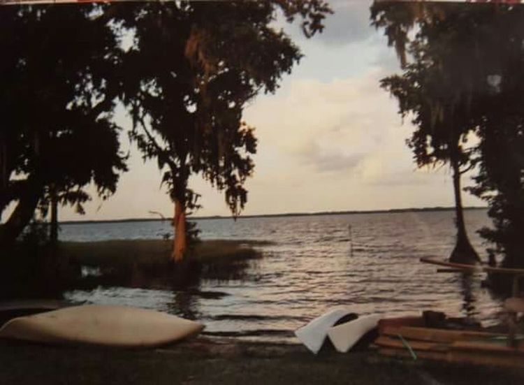 Leesburg, Florida Camp Horizon Canoes Lake View Vitange Postcard Style Lakeside Cypress Trees  Vintage Florida