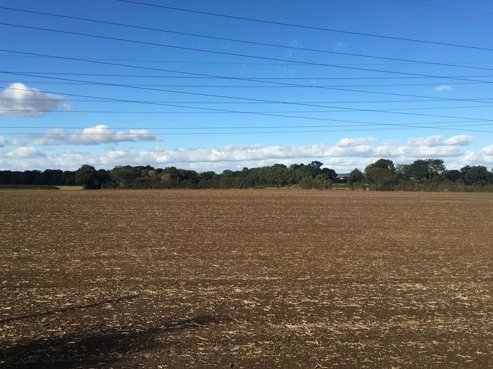 Open Fields Sky