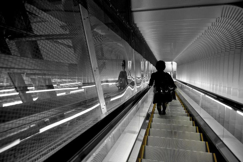 Escalator Narita NARITAAIRPORT Vanishing Point Light And Shadow Reflection