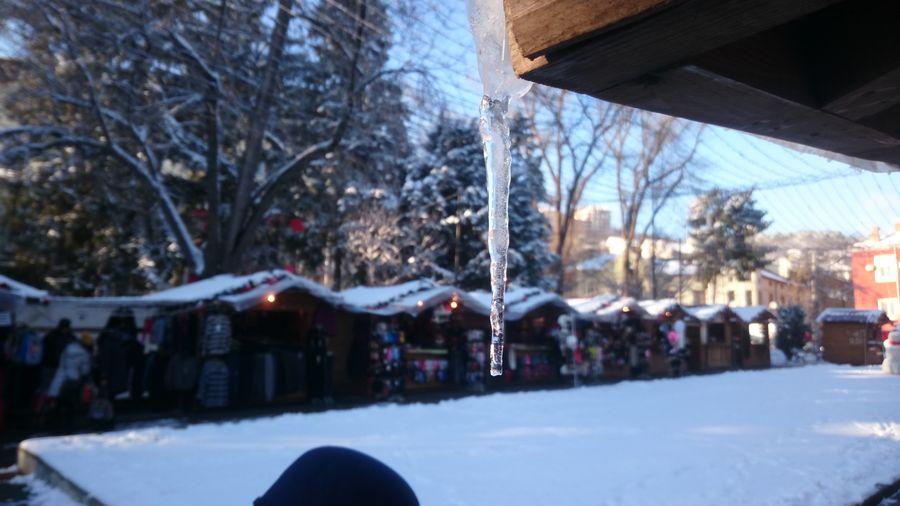 Bulgaria Christmas Christmas Spirit Ice Snow Macro Mode Veliko Turnovo