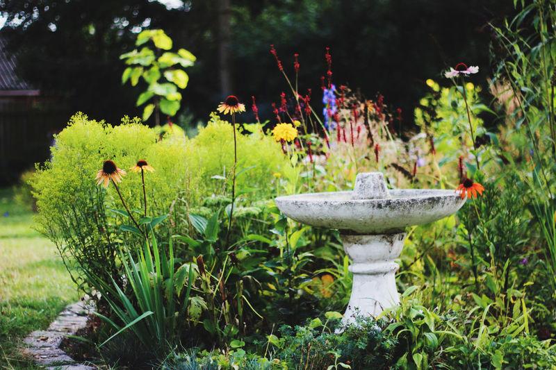 View of sculpture in garden