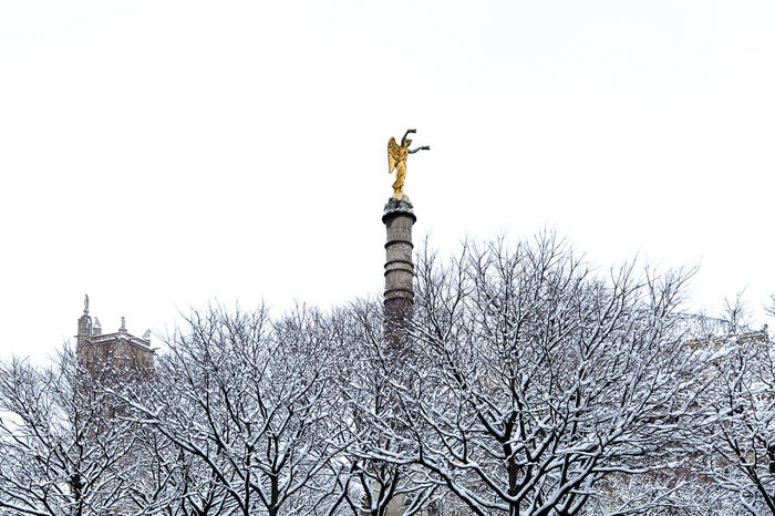 place du Chatelet à Paris!! Architecture Chatelet Paris Tour Saint-Jacques Trees Animal Themes Architecture Bare Tree Bird Branch Building Exterior Clear Sky Day Foggy Low Angle View Nature No People Outdoors Sculpture Sky Snow Statue Tree Trees And Sky Victory