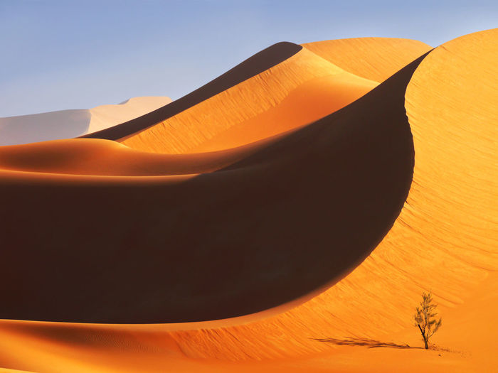 Close-up of desert against orange sky