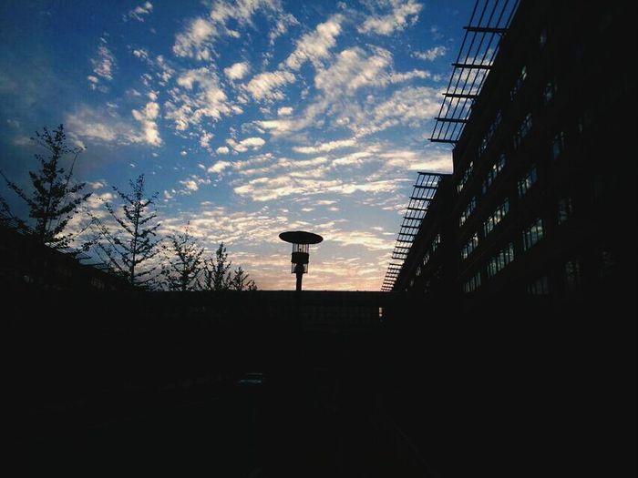 习惯性畏首畏尾,貌似是真的?Clouds And Sky Windy Day School ✌