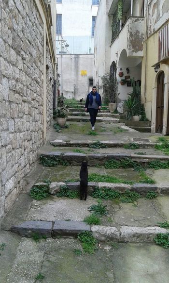 That's Me Black Cat Stairs The Tourist Gaeta Architecture Enjoying Life