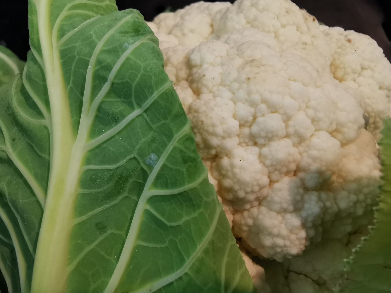 leaf, plant part, close-up, healthy eating, freshness, growth, food, food and drink, wellbeing, green color, plant, no people, nature, day, vegetable, beauty in nature, leaf vein, focus on foreground, outdoors, cauliflower