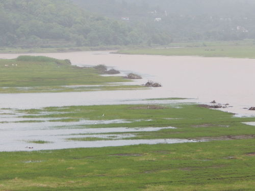 Landscapes With WhiteWall click near panshet dam