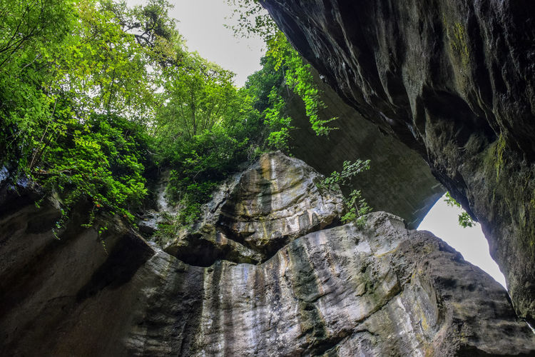 Gorges Du Fier Beauty In Nature Day Nature No People Outdoors Rock - Object Tree