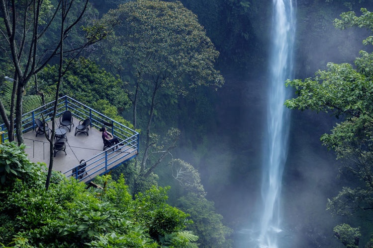 Plant Tree Water Scenics - Nature Nature Beauty In Nature Motion Long Exposure Waterfall Forest Growth Green Color Land Day Flowing Water Blurred Motion Foliage Mountain Lush Foliage Outdoors Rainforest No People Power In Nature