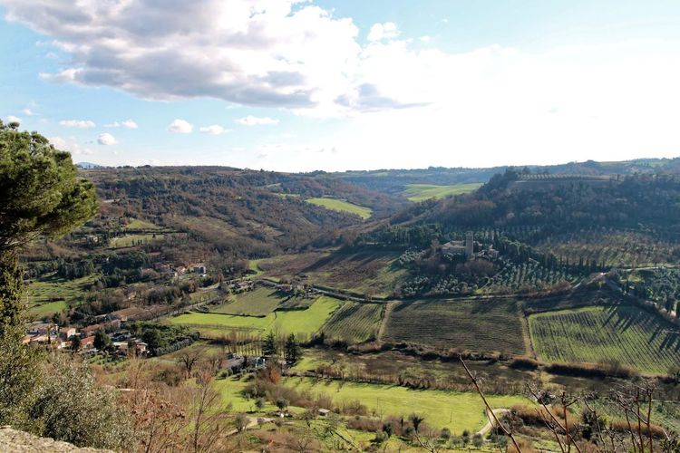 Orvieto, Italy Travel Travel Photography Traveling Agriculture Beauty In Nature Day Field Italian Italy Landscape Mountain Nature No People Orvieto Outdoors Rural Scene Scenics Sky Tranquil Scene Tranquility Travel Destinations Tree