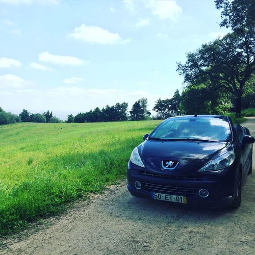 Car Grass No People Green Color Outdoors Peugeot 207cc Peugeot