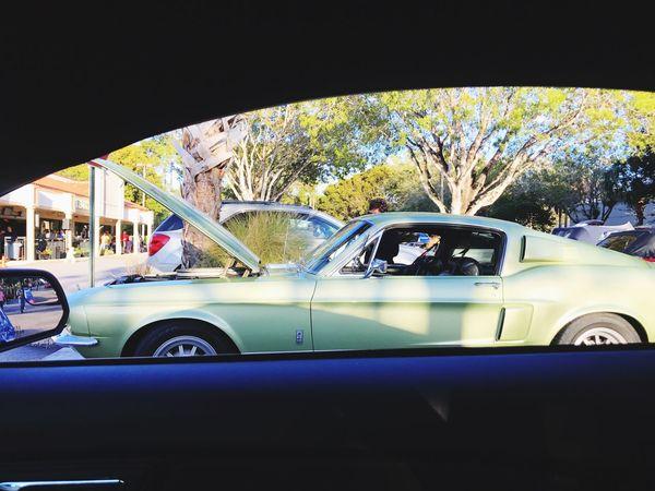 Outdoors Car Vintage Cars Mode Of Transport Transportation Car Interior Tree Day Car Show Passenger View