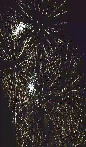 Capturing Movement Taking Photos Fireworks Majestic
