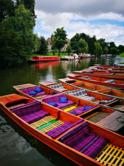 Colour Of Life cambridge punting