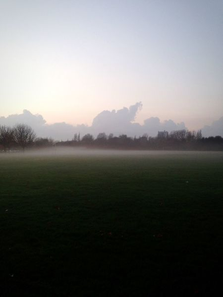 Clouds Fog Field Grass Winter
