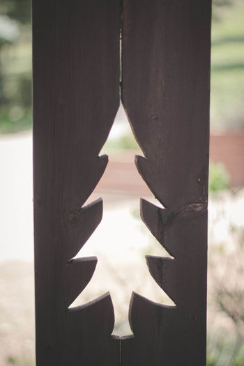 Tree Theme Christmas Cut Out Christmas Theme Christmas Tree Close-up Day Focus On Foreground Forest Nature No People Outdoors Pine Tree Tree Cut Out Tree Shape Tree Shapes Woodsy