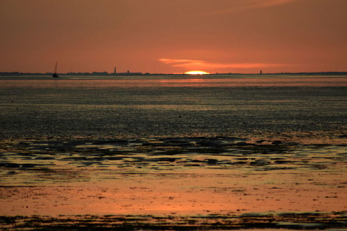 einfach nur schön Watt Beauty In Nature Day Landscape Nature No People Orange Color Outdoors Scenics Sea Silhouette Sky Sunset Tranquil Scene Tranquility Travel Destinations Water Wattenmeer