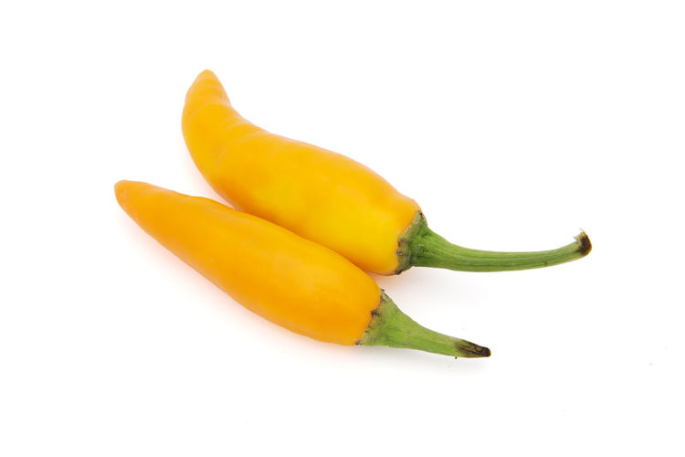 Close-up of yellow chili pepper against white background