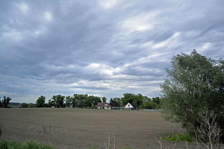 Dorf Dorfleben Feld Feldweg Landscape Nature Sky Wether Wetter Wolken