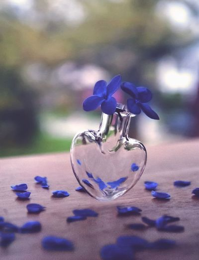 Blue No People Close-up Focus On Foreground Purple Still Life Selective Focus Flowering Plant Flower Container Glass - Material Shiny Metal Perfume Table Silver Colored Nature Day Indoors  Plant