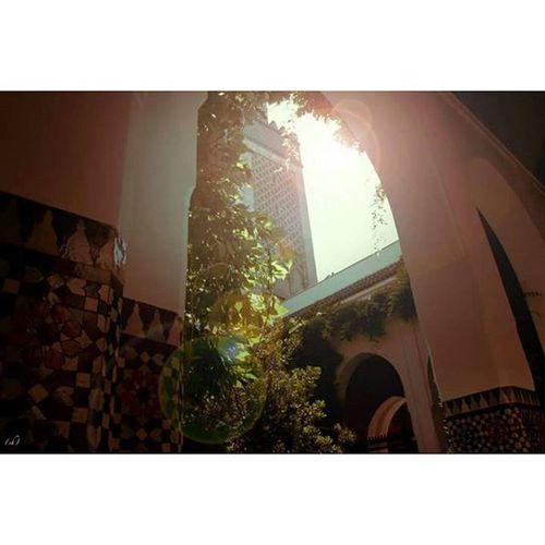 Luz Light Lumière Dine Mosqueedeparis Mosquee Paris Godhouse Maisondedieu French Ramadan  Halo Sun Soleil Canicule Minaret Greatest Leplusgrand Pray Priere Joumou3a Vendredi  Saint Holyfriday Islam muslim