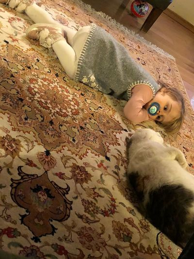 Lying Down High Angle View Indoors  One Person Looking At Camera Portrait Domestic Cat